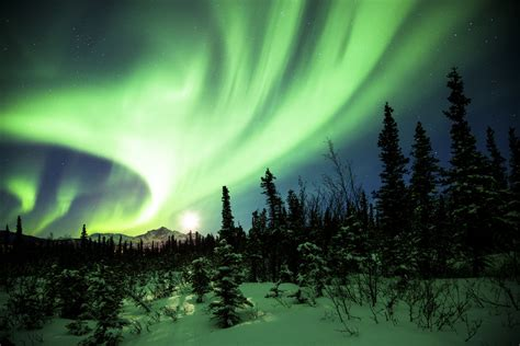 healy alaska northern lights the world s best photos of light and nightskyphotography
