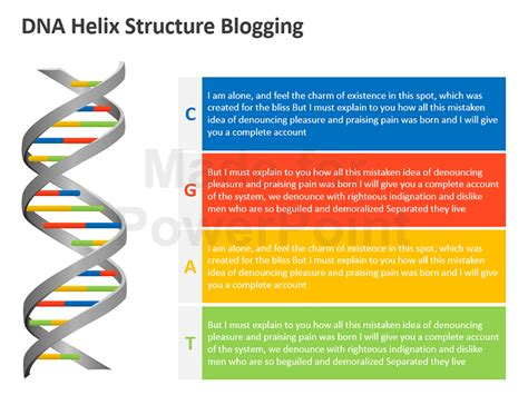Dna Helix Structure Editable Ppt Dna Powerpoint Template