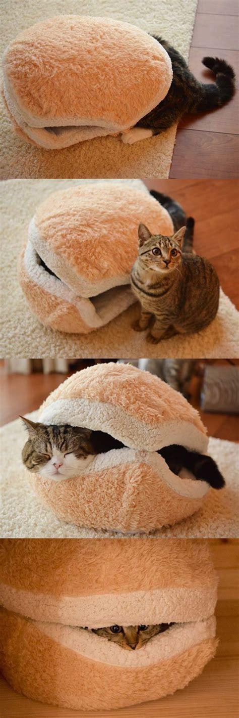 cute cat beds cute cat sammich a cool idea mill door makes