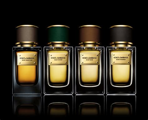 Parfum Fm 195 Dolce Gabbana The One For Original Import Eropa dolce gabbana velvet collection fragrances luxervind