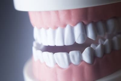 How Big Is The And Other Gum Questions by Get The Answers To Your Questions About Gum Disease