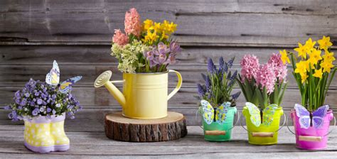 vasi terracotta colorati vasi da esterno di stile e funzionali homehome