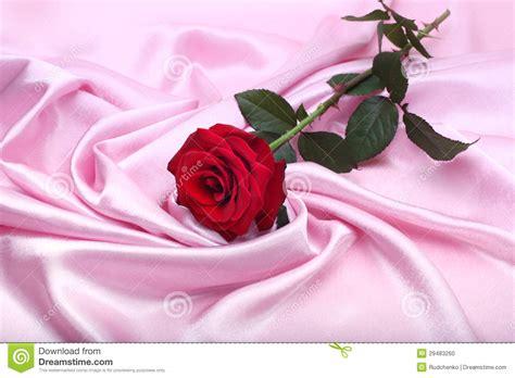 Rossa Set rosa rossa su seta rosa fotografia stock immagine 29483260