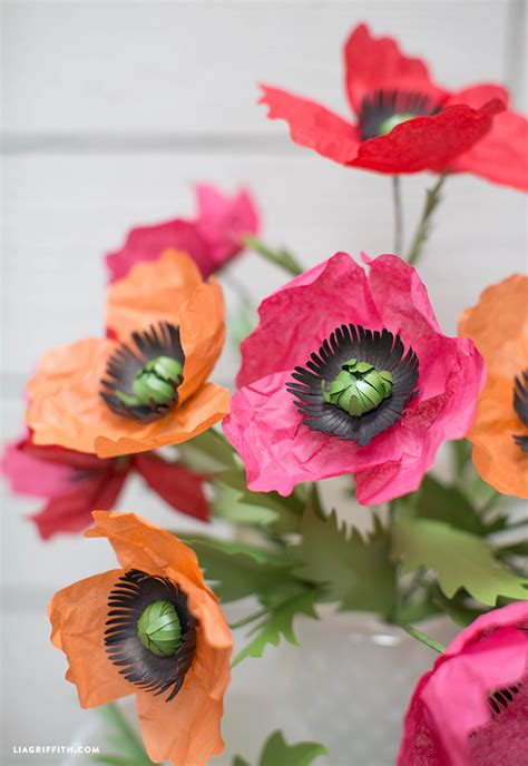 Make Paper Poppies - tissue paper poppies lia griffith