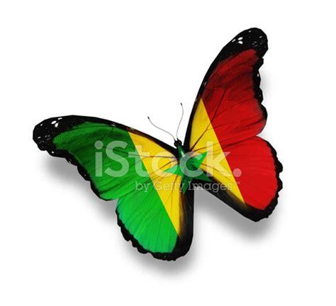 Gamis Buterfly Premium White Pasmina senegal flag butterfly isolated on white stock photos freeimages