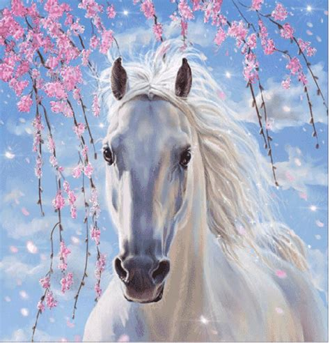 white pattern in horses belles images