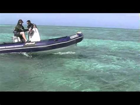 zodiac dive boat zodiac pro dive boats youtube
