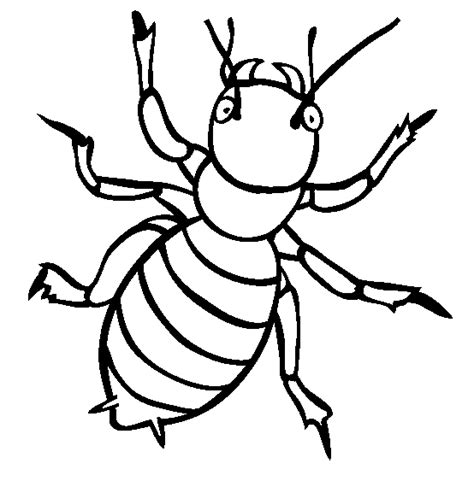 Insect Animal Coloring Pages Ideas Kids Coloring Pages Insect Coloring Page
