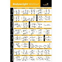 Marcy Weight Bench Instructions Workout Charts Amazon Com