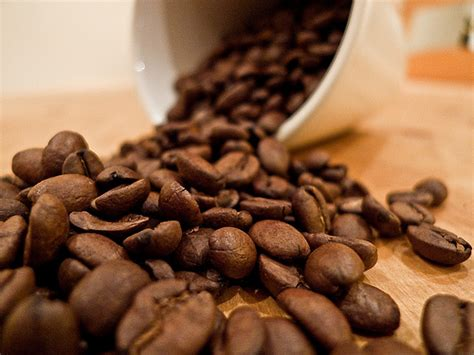 combine the best coffee beans with the best coffee mugs online the best coffee beans