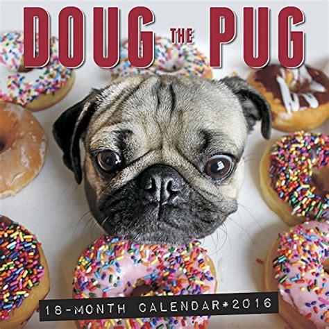 desert pugs doug the pug 2016 wall calendar desertcart