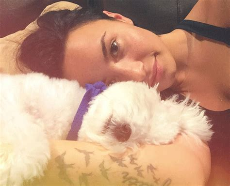 demi lovatos dogs tragic death new details about what demi lovato is devastated after death of dog buddy