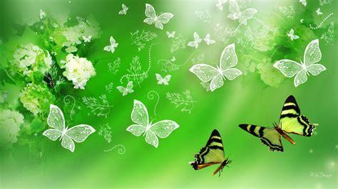 wallpaper bunga hijau hijau kupu kupu hydrangea hd wallpaper desktop layar