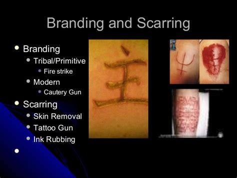 body modification and you 4 ed perspective use