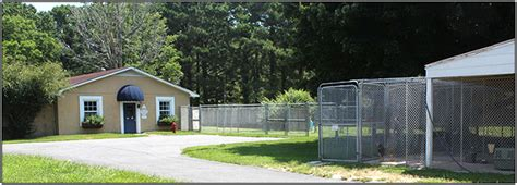 the dog house wilmington nc meadowsweet pet boarding and care wilmington n c 910 791 6421 boarding dogs cats puppies