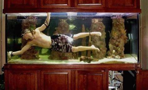 Comment Nettoyer Les Decors D Aquarium by Comment Nettoyer Aquarium Avec Poissons Dedans La