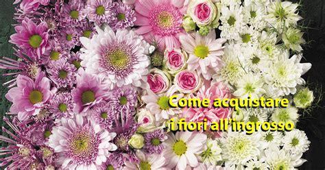 grossista fiori come acquistare fiori recisi foglie e fogliami dal grossista