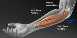 golfers elbow bench press how to do bench press with golfer s elbow scary symptoms