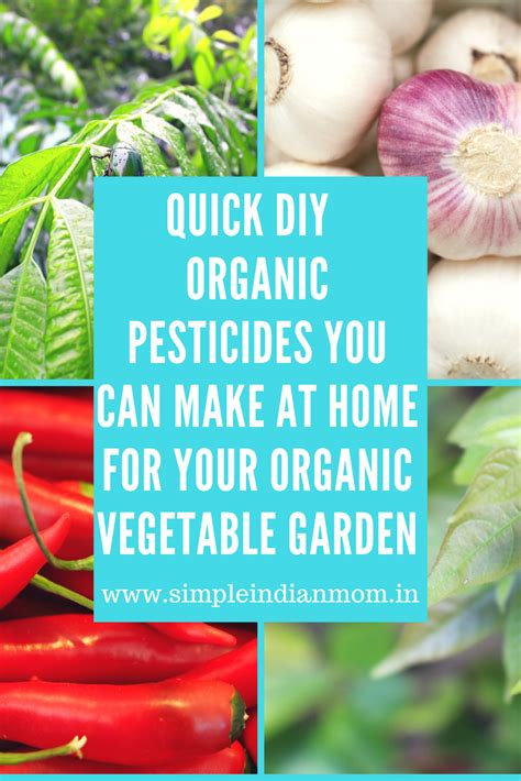 organic pesticide for vegetable garden garden ftempo