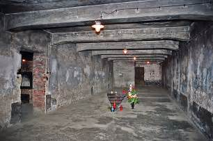 how did the auschwitz i gas chamber look in january 1945