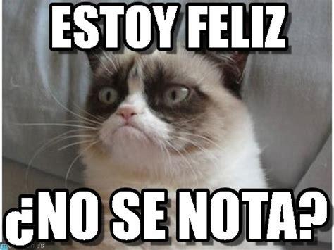 estoy feliz gato enojado meme on memegen