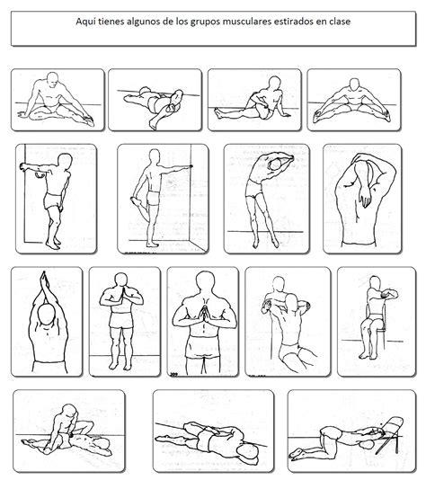 estiramientos de cadenas musculares gomariz pdf quot educar a trav 233 s del movimiento quot estiramientos variados