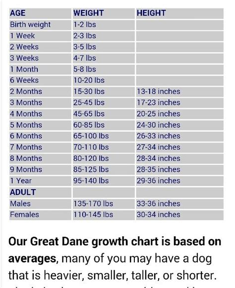 how much to feed a great dane puppy great dane feeding chart the whelping box ayucar