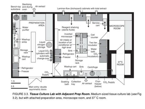 laboratory design and layout ppt ppt figure 3 4 large tissue culture laboratory