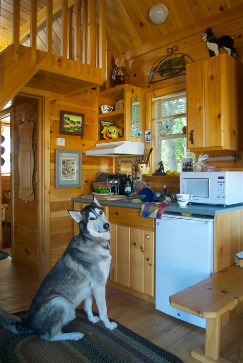 Five Bedroom Homes For Rent badrap tiny cabin tiny house swoon