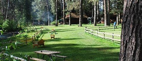 the pines of winder ranch a cold creek homecoming books cold springs resort and rv park updated 2017 prices