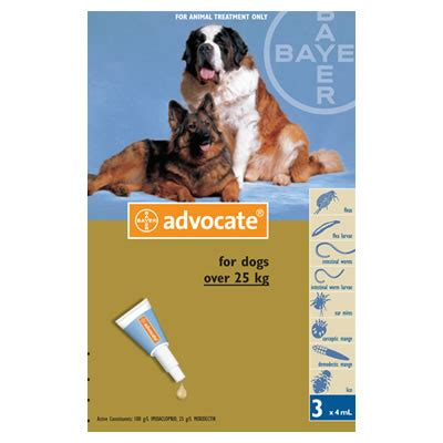 Advocate Xl For Dogs 25 40 Kg 1 Obat Kutu Anjing ยาสำหร บส น ข advocate ยาหยดหล งสำหร บส น ขน ำหน ก 25 40