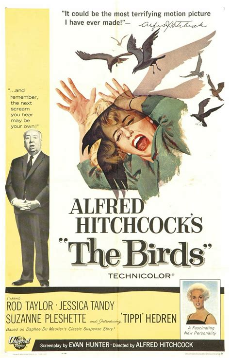 commentaries on film the birds 1963