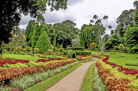 peradeniya botanical gardens jet charter to cleveland ohio pa