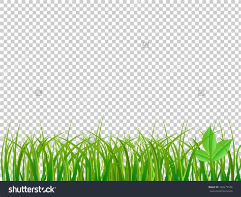 green grass clipart green background clipart clipground