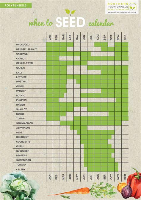 vegetable garden calendar uk when to seed calendar an easy guide to show when to