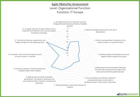 Agile Maturity Assessment Incrementor Agile Coaching And Training Agile Assessment Template