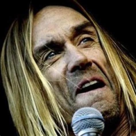 francoise hardy and iggy pop fran 231 oise hardy et iggy pop secondhandsongs