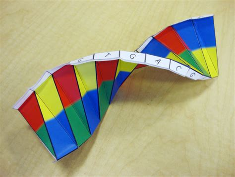 paper dna template dna origami health matters today
