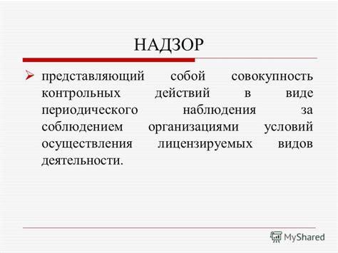 система организации контрольной деятельности