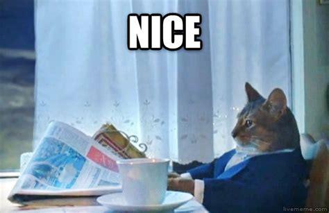 Sophisticated Cat Meme Generator - image gallery sophisticated cat