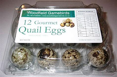 quail game birds for sale