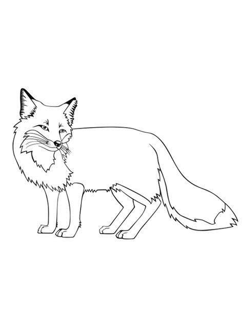 dibujos para colorear zorro dibujos de zorros para colorear y pintar