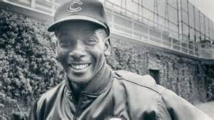 Meet Mr Ex by Around The League Meeting Mr Cub Cubs Minor League