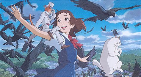 the cat returns 30 years of ghibli the cat returns entropy