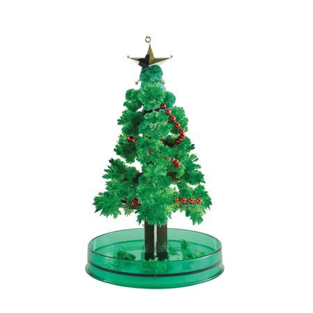 christmas tree growing kit magic growing tree kit walmart