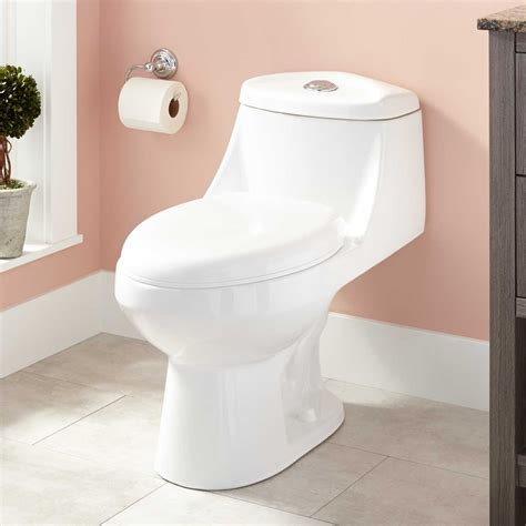 bathroom flush crosby dual flush one piece elongated toilet toilets and