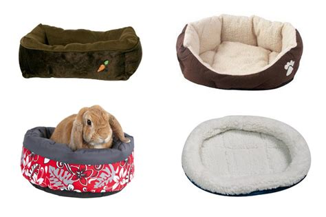 rabbit beds where do rabbits sleep bunny beds bunny approved