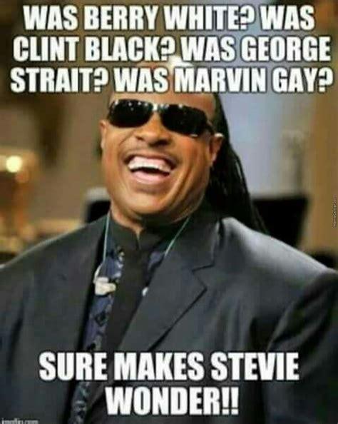 Funny Gay Birthday Meme - stevie wonder by wolfanicus meme center