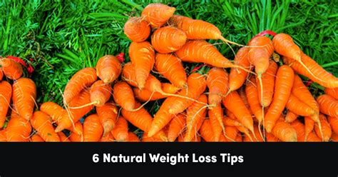 6 weight loss tips 6 weight loss tips psychology of