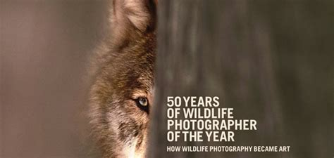 a nature companion wildlife through the year books recension av 50 years of wildlife photographer of the